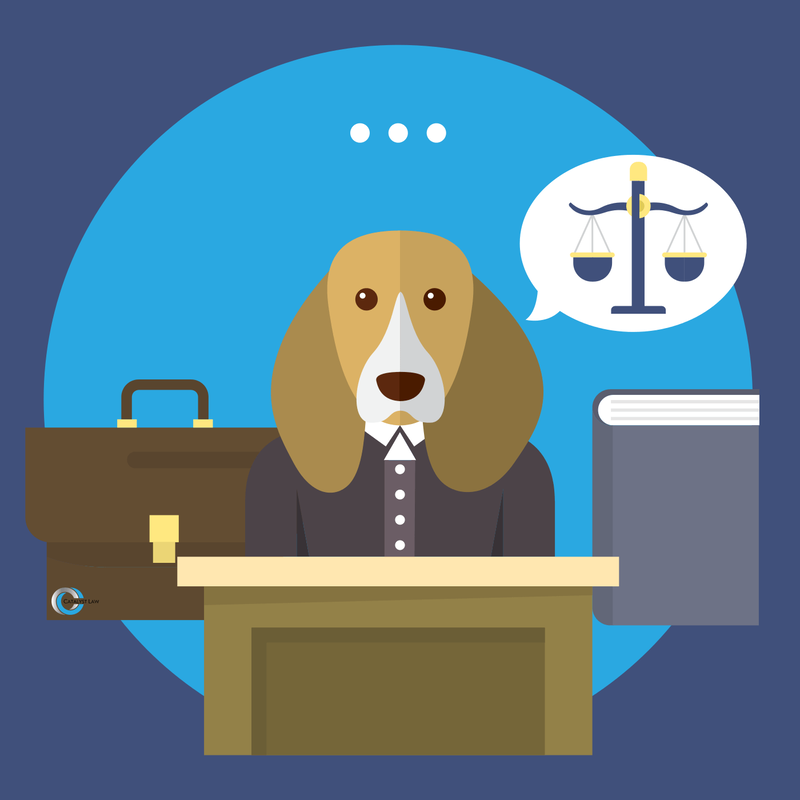 dog being defended by a lawyer in court